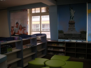 The reading area